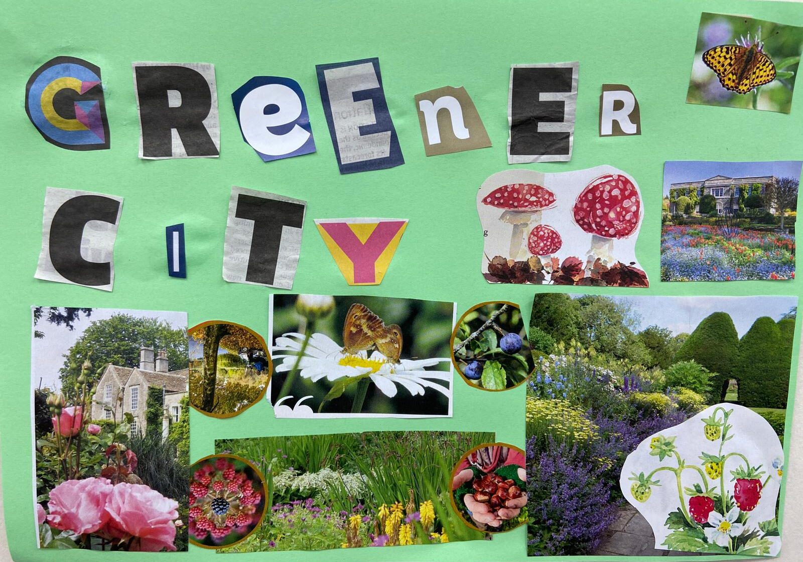 Collage of flowers, wildlife, with the words 'Greener City' featured in a bold, overlapping type.